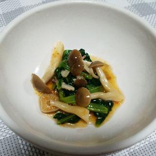 小松菜とシメジのスタミナ炒め
