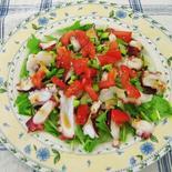 パスタソースでタコと色とりどりの野菜のカルパッチョ