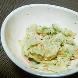 キャベツとニンジンのコールスローサラダ